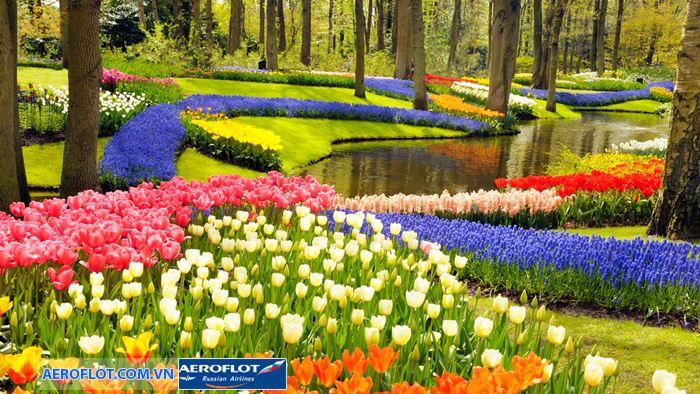 vườn hoaKeukenhof