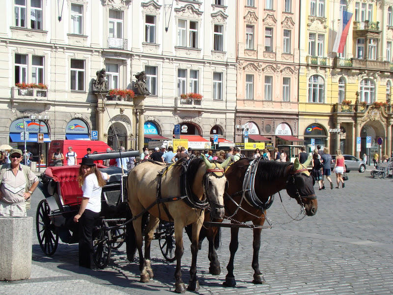 Central-Europe02-07-08-2008 897