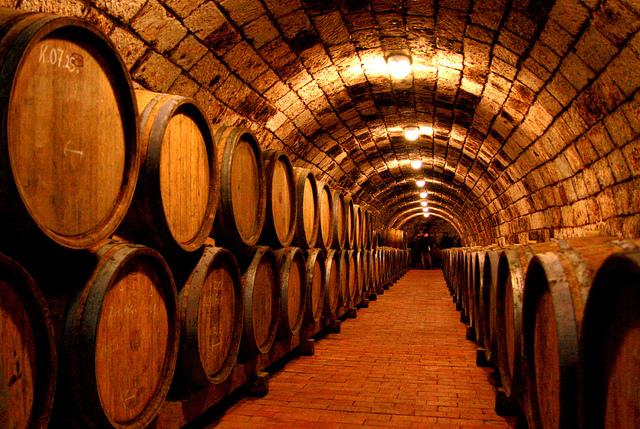 Thưởng thức đặc sản rượu nho tại Tokaj Hegyalja