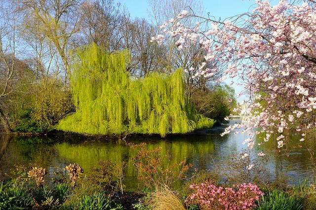 Thời tiết bốn mùa ở Anh