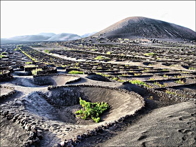 Khám phá hòn đảo xinh đẹp Lanzarote
