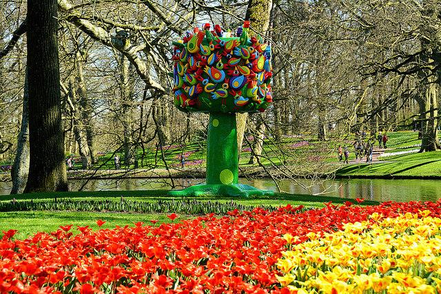 Top 5 công viên tuyệt đẹp ở Amsterdam