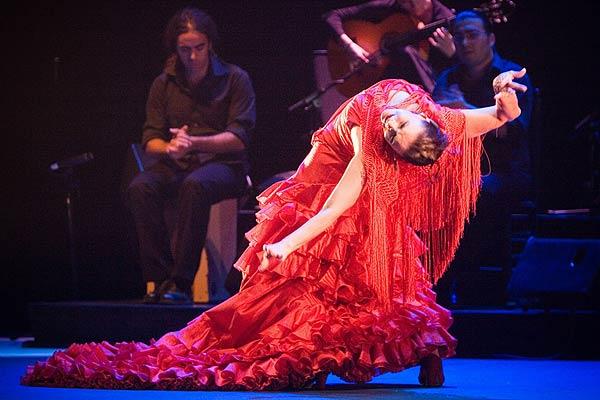 flamenco3