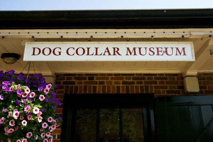 bảo tàng chó Dog Collar Museum