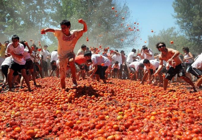 lễ hội ném cà chua