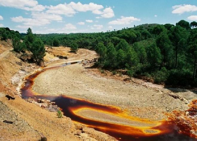 dòng sông máu1