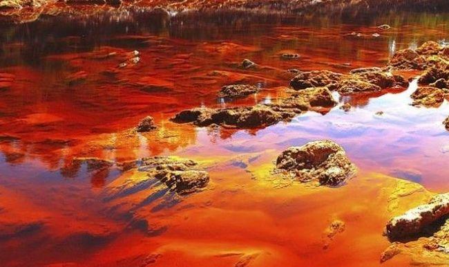 dòng sông máu2