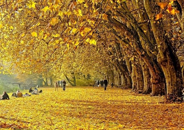 mùa thu berlin