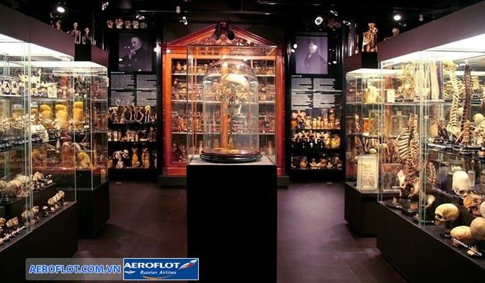 Bảo tàng Vrolik