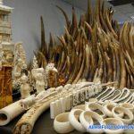Hình điêu khắc chạm trổ từ ngà voi