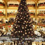 Cây thông Noel với hàng ngàn hộp quà to nhỏ